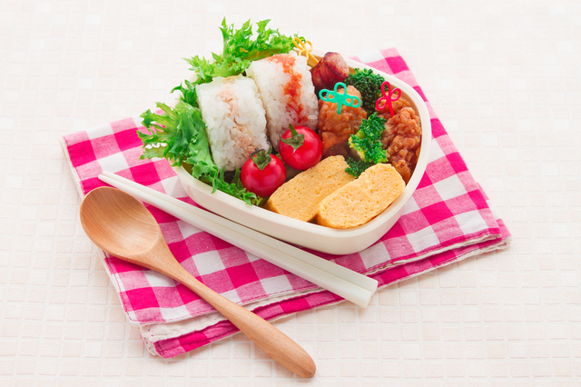 Japanese homemade lunchbox