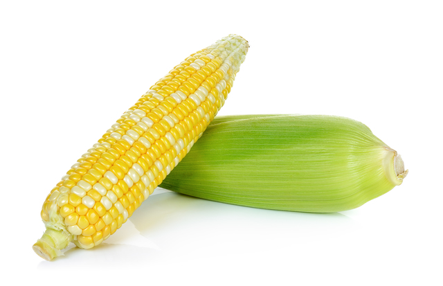 Raw corn isolated on the white background.